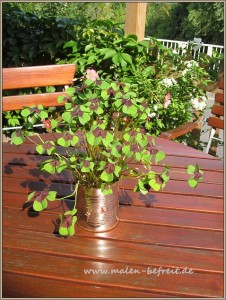 bepflanzte konservendose - kreativ oder nicht?